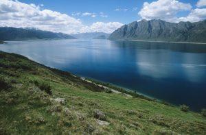 Colorado hemp and lake